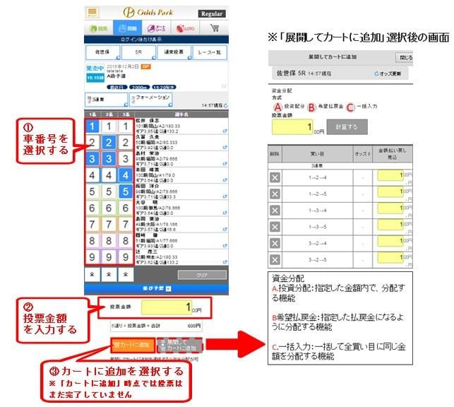 「オッズ」→「投票金額」→「資金配分」→「カートに追加」